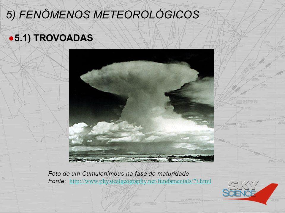 5) FENÔMENOS METEOROLÓGICOS 5.1) TROVOADAS Foto de um Cumulonimbus na fase de maturidade Fonte: http://www.physicalgeography.net/fundamentals/7t.html