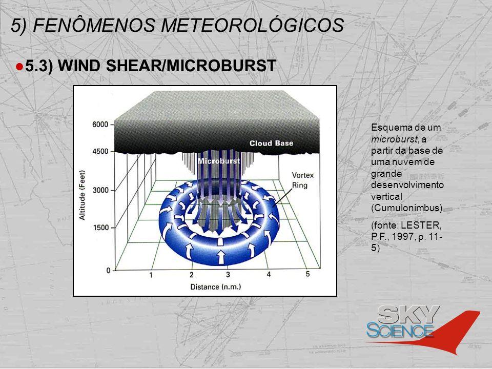 5) FENÔMENOS METEOROLÓGICOS 5.3) WIND SHEAR/MICROBURST Esquema de um microburst, a partir da base de uma nuvem de grande desenvolvimento vertical (Cum