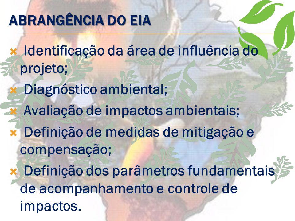 FASES DO EIA Informações básicas/ termo de referência; Elaboração dos estudos da equipe multidisciplinar e do Relatório de Impacto Ambiental (RIMA); A
