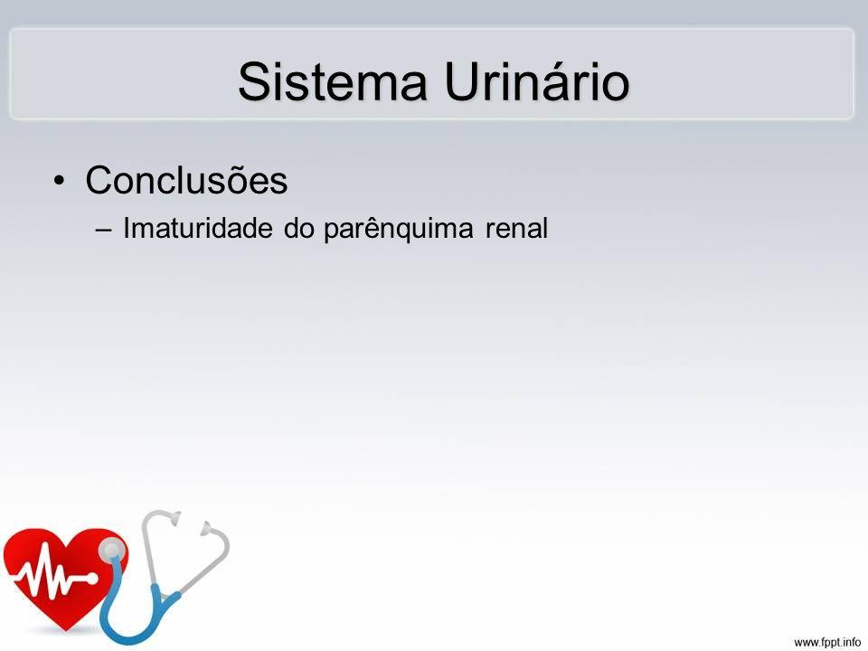 Conclusões –Imaturidade do parênquima renal