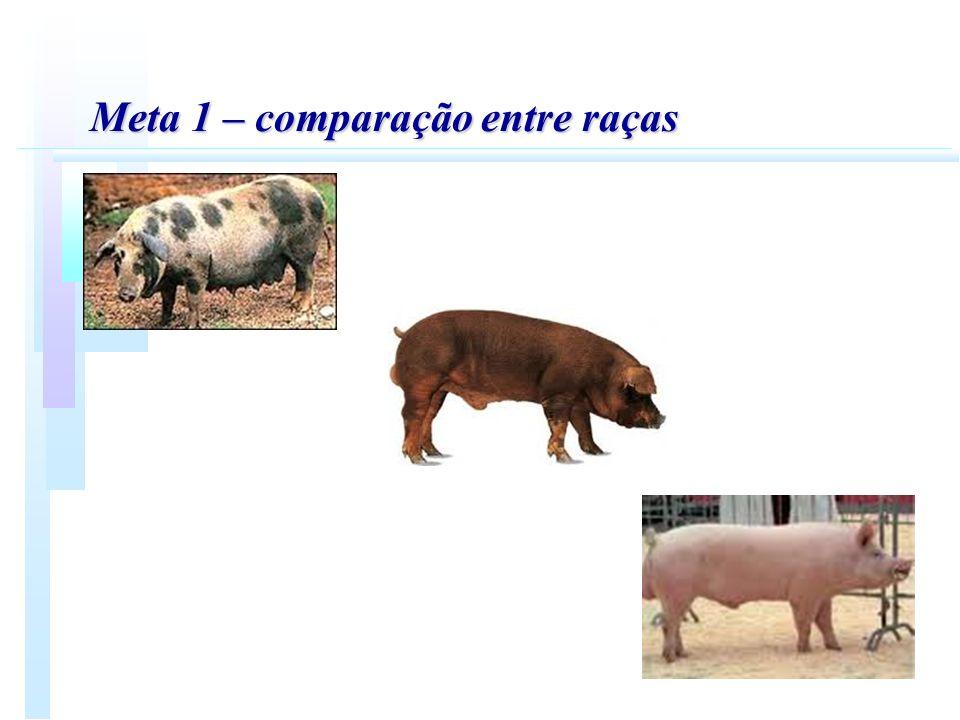 Meta 2 - Meta 2 - Desenvolvimento de programas computacionais para avaliação genética quantitativa e molecular em animais de produção.