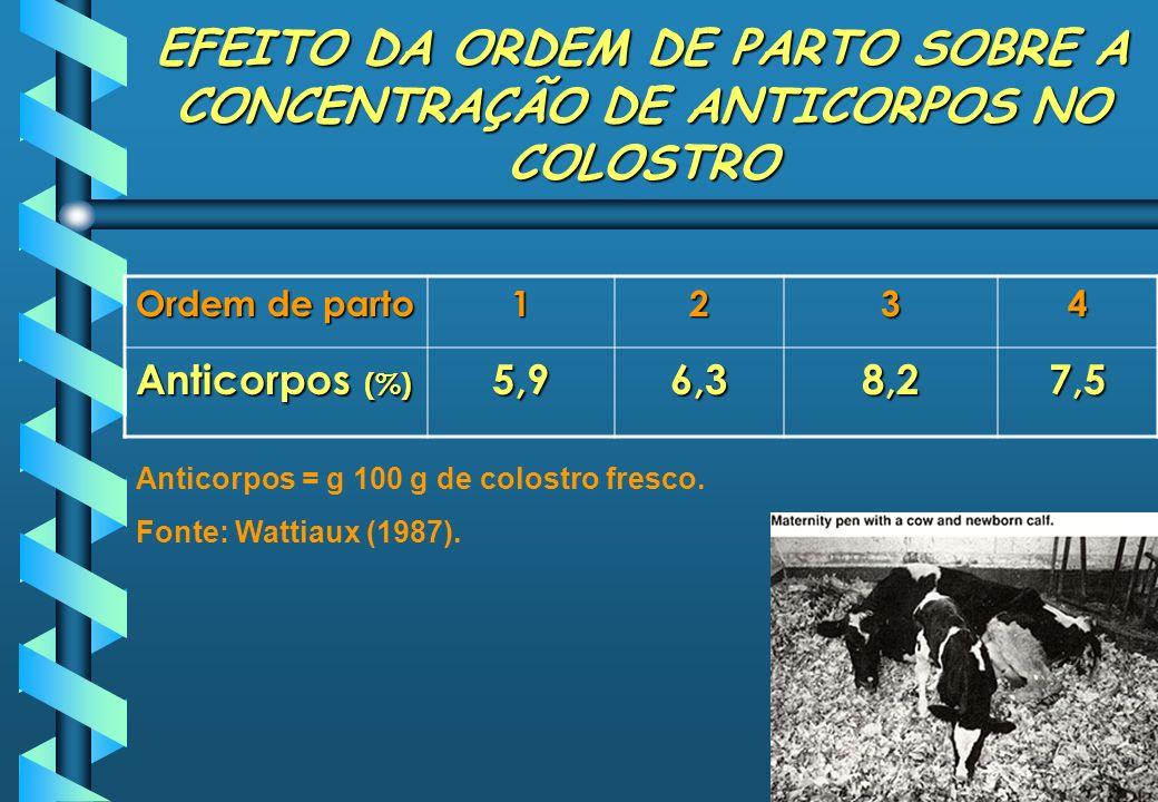 EFEITO DA ORDEM DE PARTO SOBRE A CONCENTRAÇÃO DE ANTICORPOS NO COLOSTRO Ordem de parto 1234 Anticorpos (%) 5,96,38,27,5 Anticorpos = g 100 g de colost