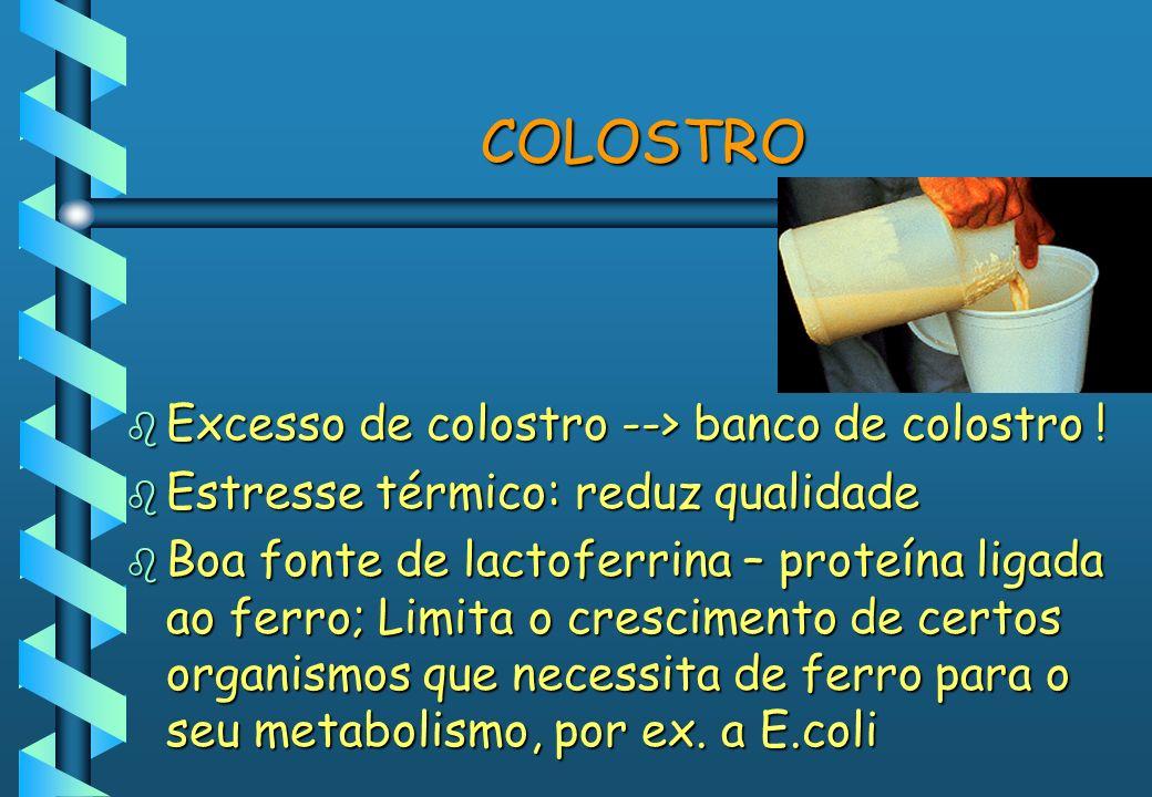 COLOSTRO b Excesso de colostro --> banco de colostro ! b Estresse térmico: reduz qualidade b Boa fonte de lactoferrina – proteína ligada ao ferro; Lim