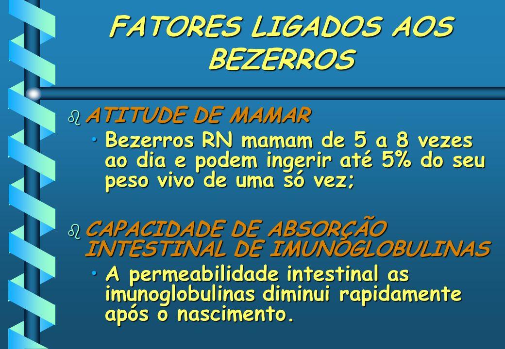FATORES LIGADOS AOS BEZERROS b ATITUDE DE MAMAR Bezerros RN mamam de 5 a 8 vezes ao dia e podem ingerir até 5% do seu peso vivo de uma só vez;Bezerros