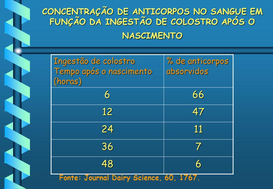 CONCENTRAÇÃO DE ANTICORPOS NO SANGUE EM FUNÇÃO DA INGESTÃO DE COLOSTRO APÓS O NASCIMENTO Ingestão de colostro Tempo após o nascimento (horas) % de ant