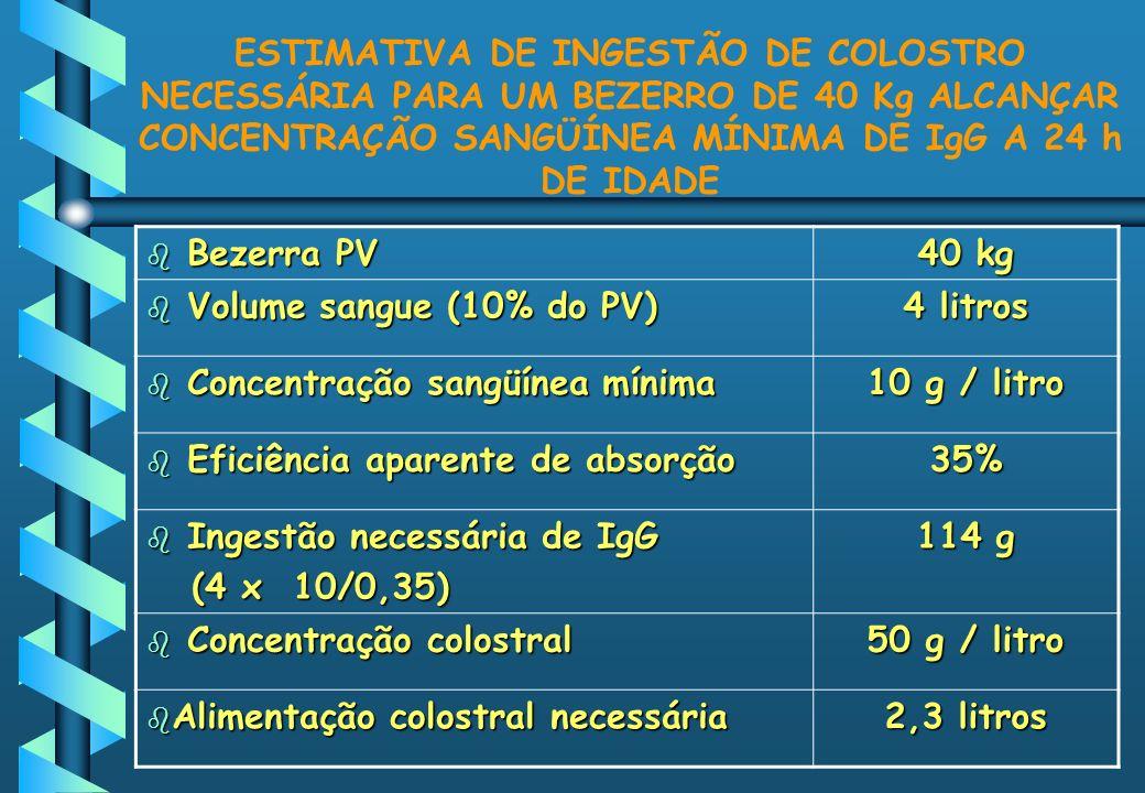 ESTIMATIVA DE INGESTÃO DE COLOSTRO NECESSÁRIA PARA UM BEZERRO DE 40 Kg ALCANÇAR CONCENTRAÇÃO SANGÜÍNEA MÍNIMA DE IgG A 24 h DE IDADE b Bezerra PV 40 k