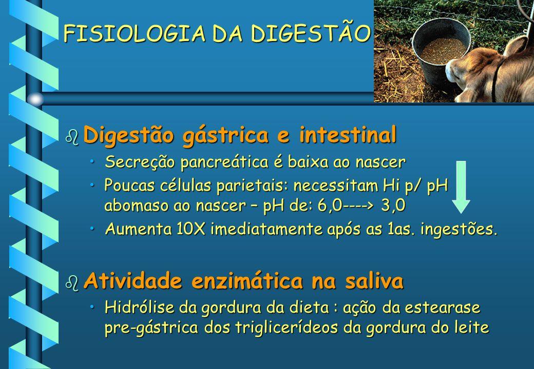 FISIOLOGIA DA DIGESTÃO b Digestão gástrica e intestinal Secreção pancreática é baixa ao nascerSecreção pancreática é baixa ao nascer Poucas células pa