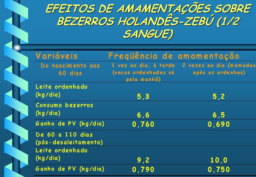 EFEITOS DE AMAMENTAÇÕES SOBRE BEZERROS HOLANDÊS-ZEBÚ (1/2 SANGUE)