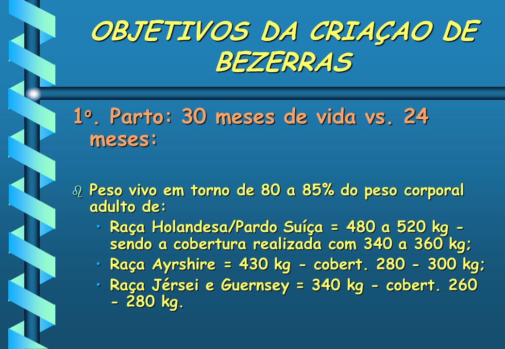 OBJETIVOS DA CRIAÇAO DE BEZERRAS 1 o. Parto: 30 meses de vida vs. 24 meses: b Peso vivo em torno de 80 a 85% do peso corporal adulto de: Raça Holandes
