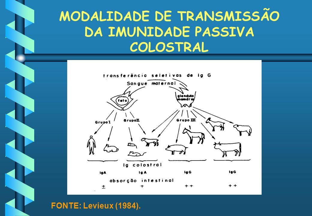 MODALIDADE DE TRANSMISSÃO DA IMUNIDADE PASSIVA COLOSTRAL FONTE: Levieux (1984).