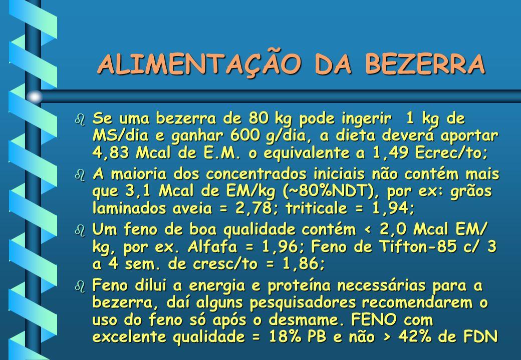 ALIMENTAÇÃO DA BEZERRA b Se uma bezerra de 80 kg pode ingerir 1 kg de MS/dia e ganhar 600 g/dia, a dieta deverá aportar 4,83 Mcal de E.M. o equivalent
