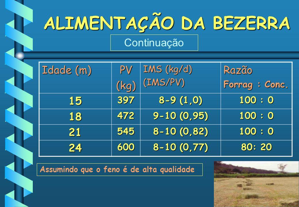 ALIMENTAÇÃO DA BEZERRA Idade (m) PV(kg) IMS (kg/d) (IMS/PV)Razão Forrag : Conc. 15397 8-9 (1,0) 100 : 0 18472 9-10 (0,95) 100 : 0 21545 8-10 (0,82) 10