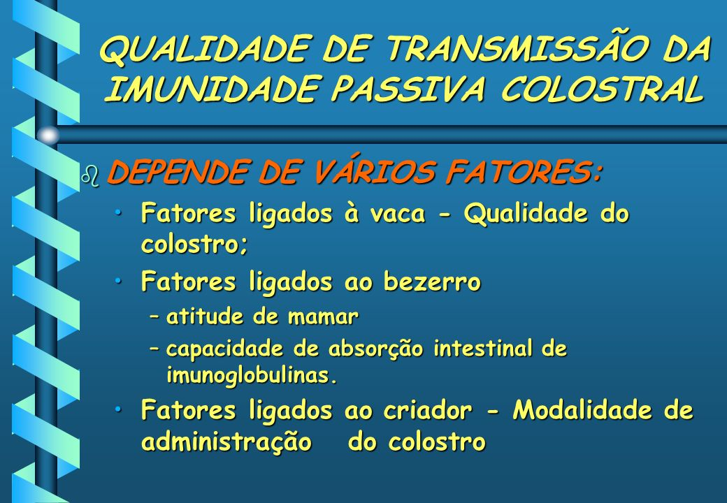 QUALIDADE DE TRANSMISSÃO DA IMUNIDADE PASSIVA COLOSTRAL b DEPENDE DE VÁRIOS FATORES: Fatores ligados à vaca - Qualidade do colostro;Fatores ligados à