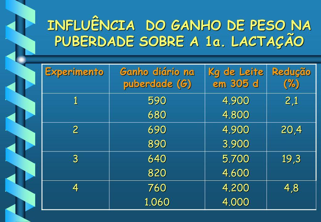 INFLUÊNCIA DO GANHO DE PESO NA PUBERDADE SOBRE A 1a. LACTAÇÃO Experimento Ganho diário na puberdade (G) Kg de Leite em 305 d Redução (%) 15906804.9004