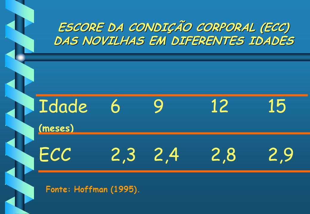 ESCORE DA CONDIÇÃO CORPORAL (ECC) DAS NOVILHAS EM DIFERENTES IDADES Idade 691215 (meses) ECC2,32,42,82,9 Fonte: Hoffman (1995).