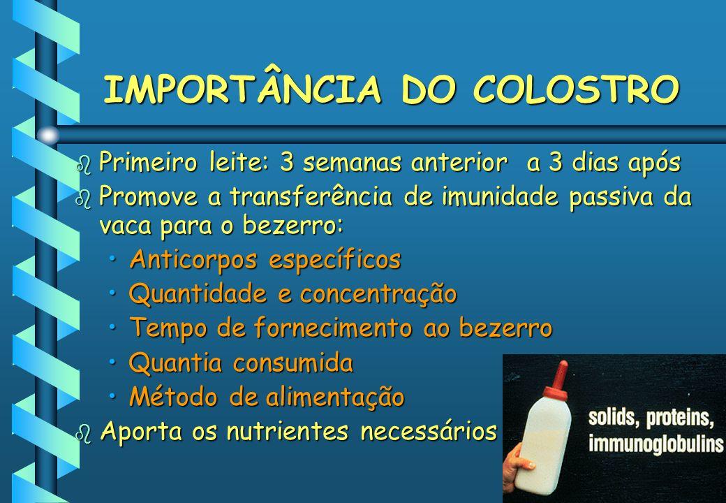 FORNECIMENTO DE COLOSTRO: PELA SONDA ESOFAGEANA Esophageal tube feederEsophageal tube feeder