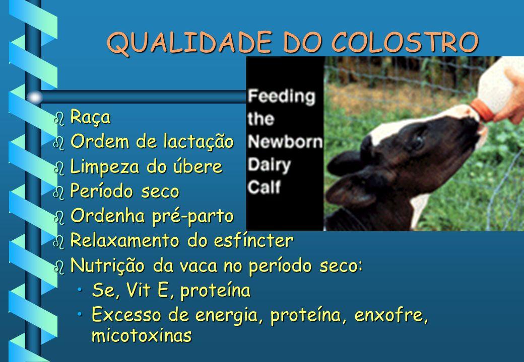 QUALIDADE DO COLOSTRO b Raça b Ordem de lactação b Limpeza do úbere b Período seco b Ordenha pré-parto b Relaxamento do esfíncter b Nutrição da vaca n
