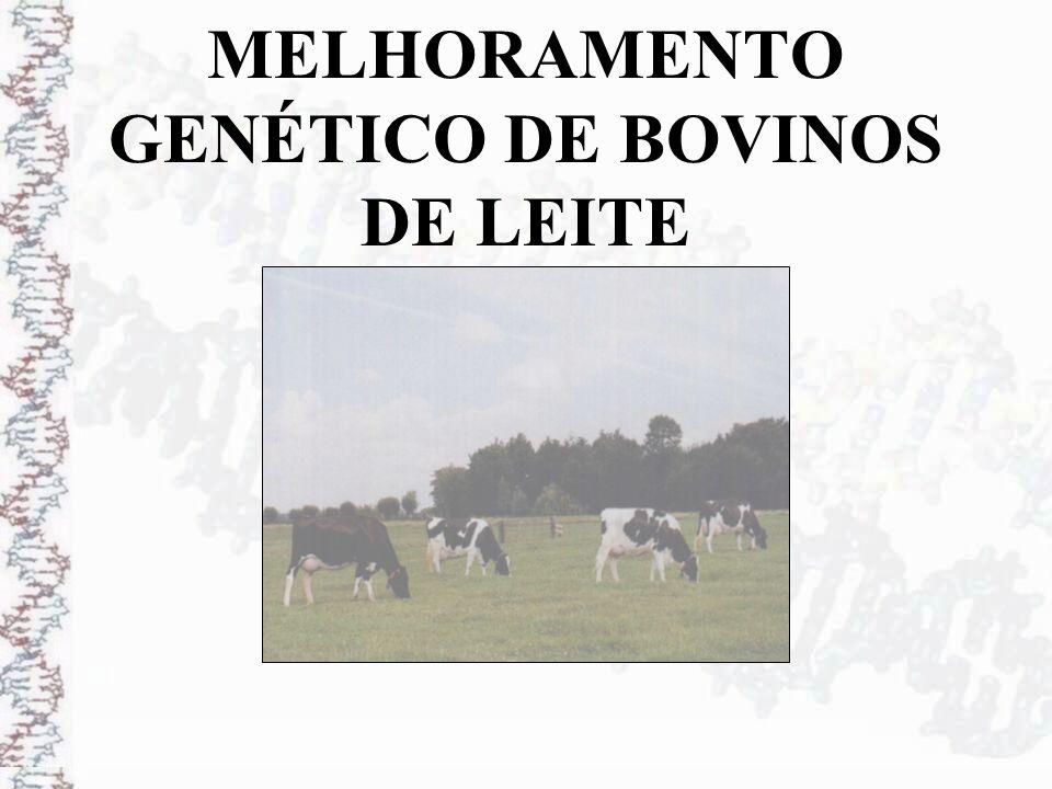 Seleção:Capacidade de Transmissão Prevista PTA = Predicted Transmitting Ability - (DEP) - Sumário de Touros - Por exemplo, em relação a uma base antiga, o PTA para produção de leite de dois touros pode ser + 3.680 kg e + 4.190 kg (510 kg de diferença).