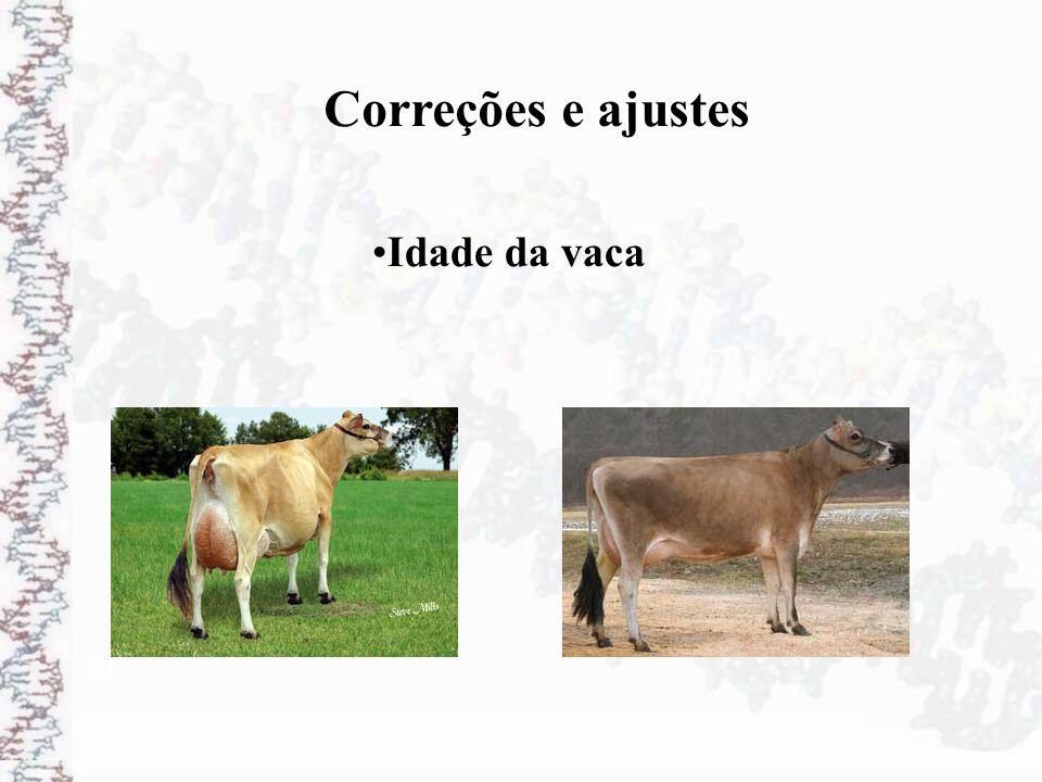 Correções e ajustes Idade da vaca
