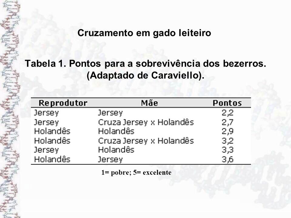 Tabela 1. Pontos para a sobrevivência dos bezerros. (Adaptado de Caraviello). 1= pobre; 5= excelente Cruzamento em gado leiteiro
