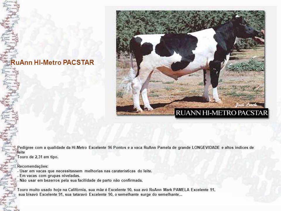 RuAnn HI-Metro PACSTAR Pedigree com a qualidade da Hi-Metro Excelente 96 Pontos e a vaca RuAnn Pamela de grande LONGEVIDADE e altos índices de leite T