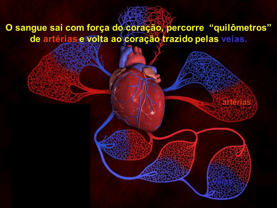 Copyright © RHVIDA S/C Ltda. www.rhvida.com.br 14 Assim como todos os rios correm para o mar, o sangue corre sempre para o coração.