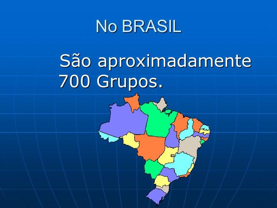 No BRASIL São aproximadamente 700 Grupos. São aproximadamente 700 Grupos.