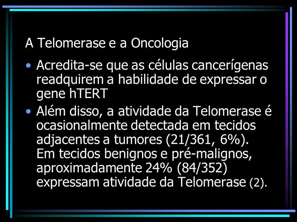A Telomerase e a Oncologia Acredita-se que as células cancerígenas readquirem a habilidade de expressar o gene hTERT Além disso, a atividade da Telome
