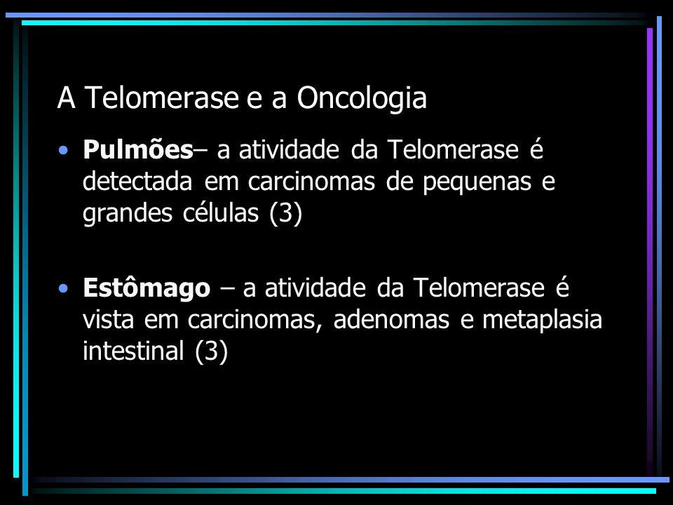 A Telomerase e a Oncologia Pulmões– a atividade da Telomerase é detectada em carcinomas de pequenas e grandes células (3) Estômago – a atividade da Te