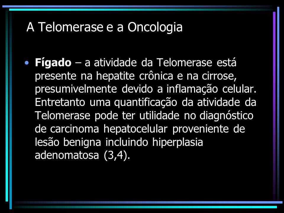 A Telomerase e a Oncologia Fígado – a atividade da Telomerase está presente na hepatite crônica e na cirrose, presumivelmente devido a inflamação celu
