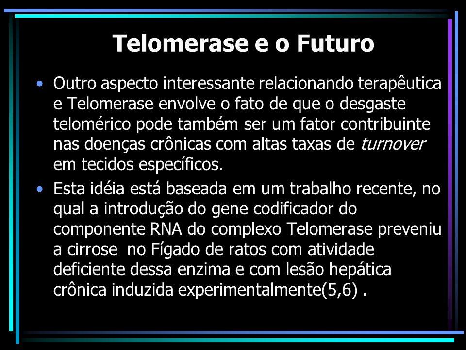 A Telomerase e o Futuro Outro aspecto interessante relacionando terapêutica e Telomerase envolve o fato de que o desgaste telomérico pode também ser u