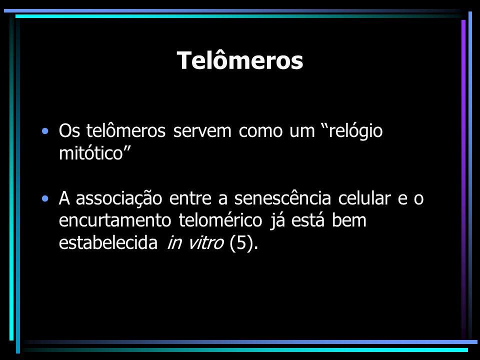 Telômeros Os telômeros servem como um relógio mitótico A associação entre a senescência celular e o encurtamento telomérico já está bem estabelecida i