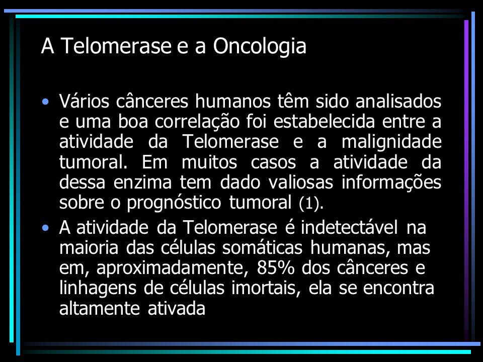 A Telomerase e a Oncologia Vários cânceres humanos têm sido analisados e uma boa correlação foi estabelecida entre a atividade da Telomerase e a malig