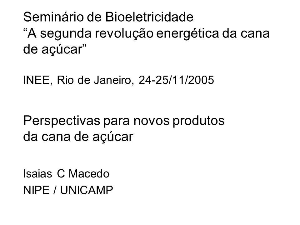 Seminário de Bioeletricidade A segunda revolução energética da cana de açúcar INEE, Rio de Janeiro, 24-25/11/2005 Perspectivas para novos produtos da