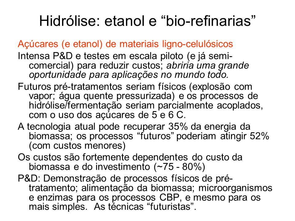 Hidrólise: etanol e bio-refinarias Açúcares (e etanol) de materiais ligno-celulósicos Intensa P&D e testes em escala piloto (e já semi- comercial) par