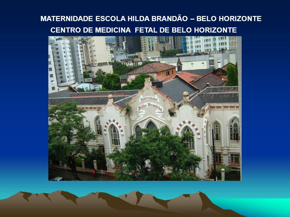 MATERNIDADE ESCOLA HILDA BRANDÃO – BELO HORIZONTE CENTRO DE MEDICINA FETAL DE BELO HORIZONTE