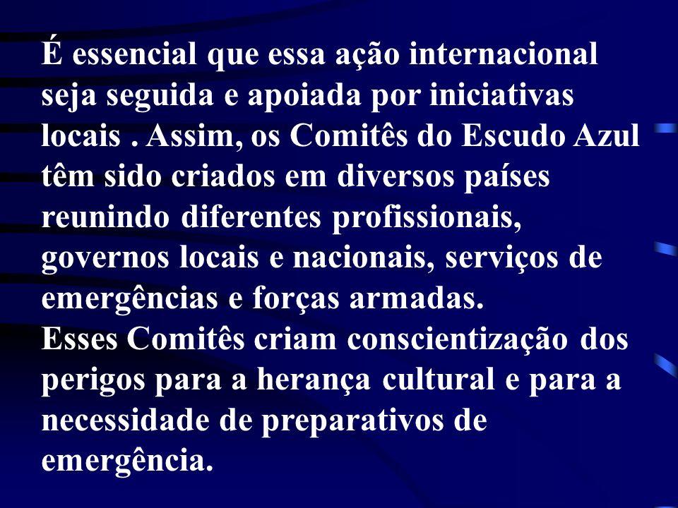 É essencial que essa ação internacional seja seguida e apoiada por iniciativas locais. Assim, os Comitês do Escudo Azul têm sido criados em diversos p