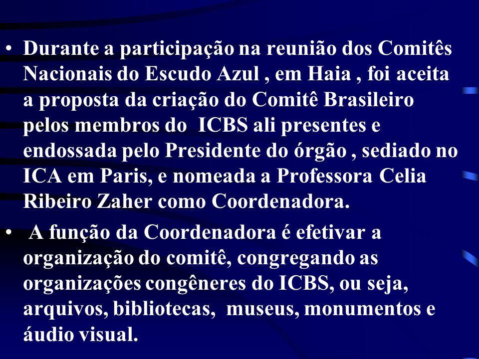 Durante a participação na reunião dos Comitês Nacionais do Escudo Azul, em Haia, foi aceita a proposta da criação do Comitê Brasileiro pelos membros d