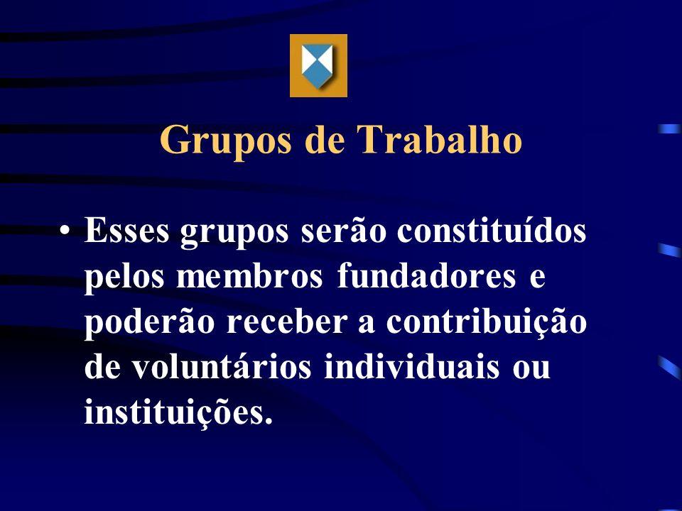 Grupos de Trabalho Esses grupos serão constituídos pelos membros fundadores e poderão receber a contribuição de voluntários individuais ou instituiçõe