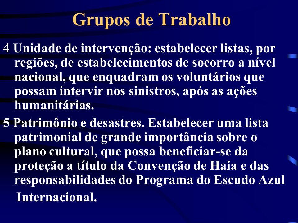 Grupos de Trabalho 4 Unidade de intervenção: estabelecer listas, por regiões, de estabelecimentos de socorro a nível nacional, que enquadram os volunt