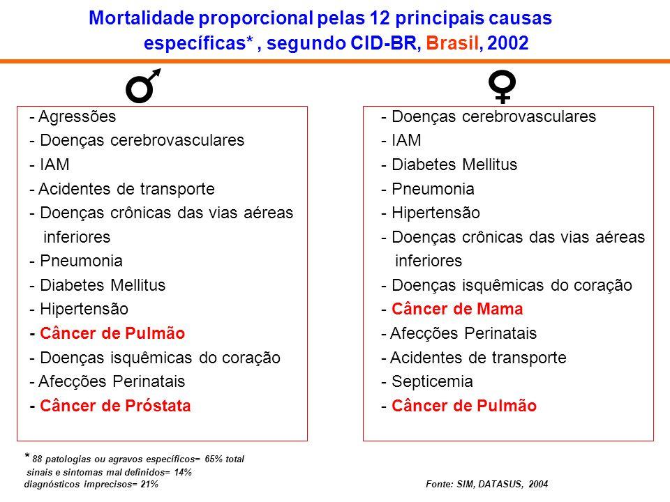 - Agressões - Doenças cerebrovasculares - IAM - Acidentes de transporte - Doenças crônicas das vias aéreas inferiores - Pneumonia - Diabetes Mellitus