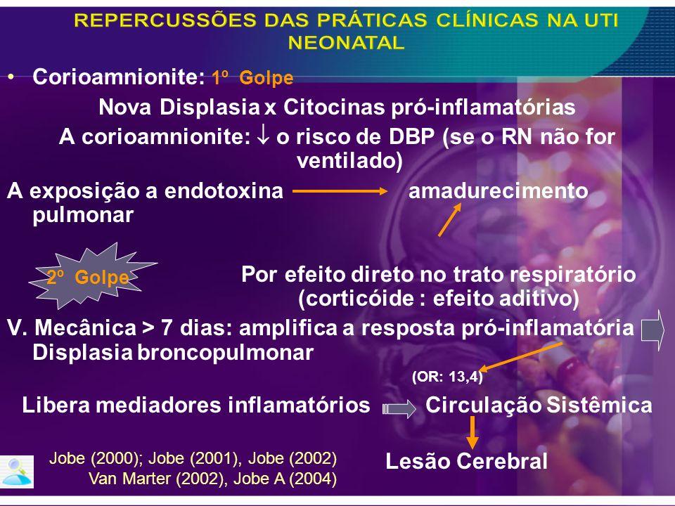 Corioamnionite: 1º Golpe Nova Displasia x Citocinas pró-inflamatórias A corioamnionite: o risco de DBP (se o RN não for ventilado) A exposição a endot