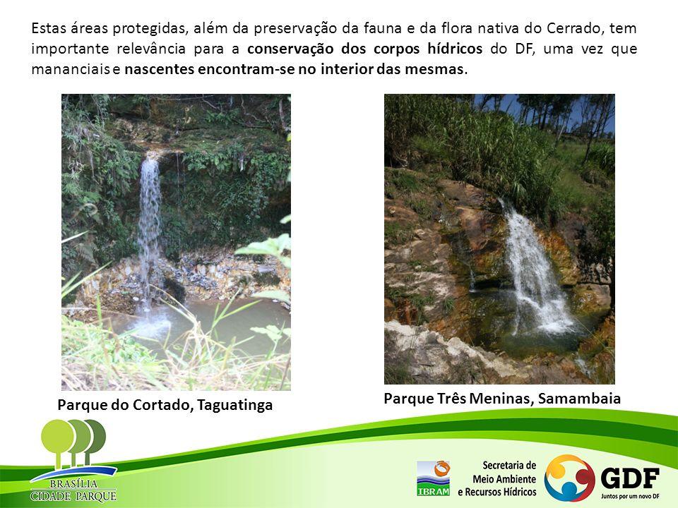 Estudo realizado pelo Instituto Brasília Ambiental, concluído em março de 2013, revela que 40% das áreas de parques estão degradadas.