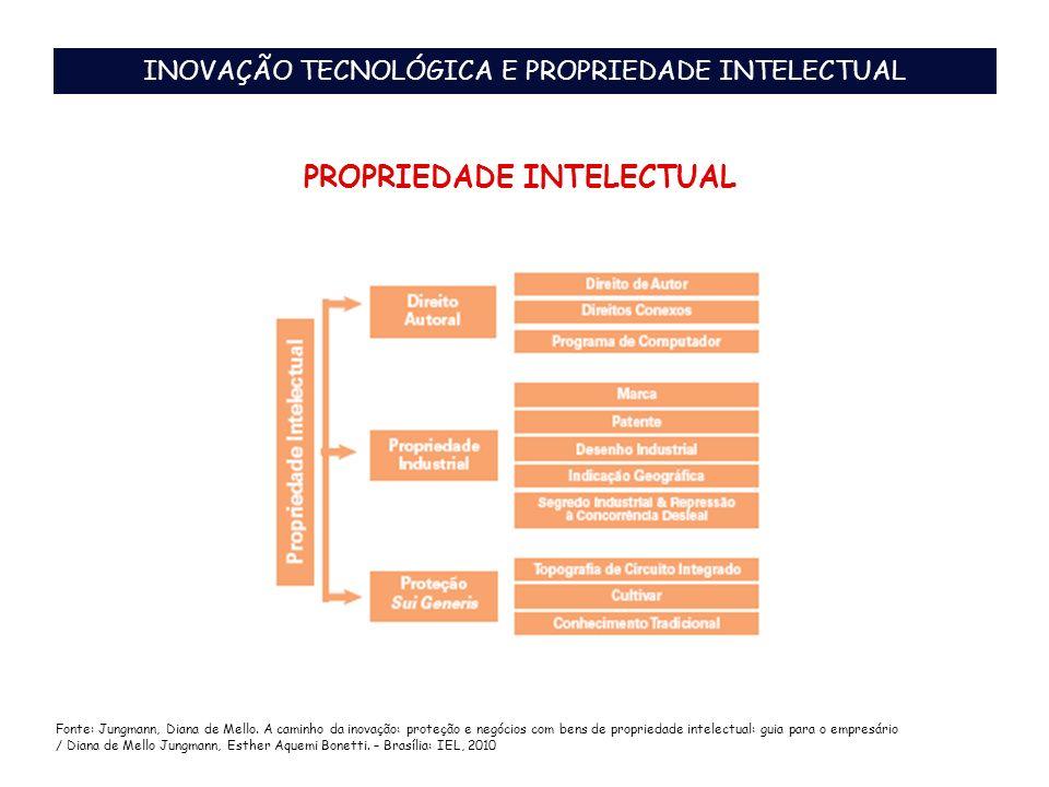 PROPRIEDADE INTELECTUAL Fonte: Jungmann, Diana de Mello. A caminho da inovação: proteção e negócios com bens de propriedade intelectual: guia para o e