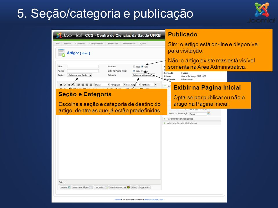 5. Seção/categoria e publicação Seção e Categoria Escolha a seção e categoria de destino do artigo, dentre as que já estão predefinidas. Publicado Sim