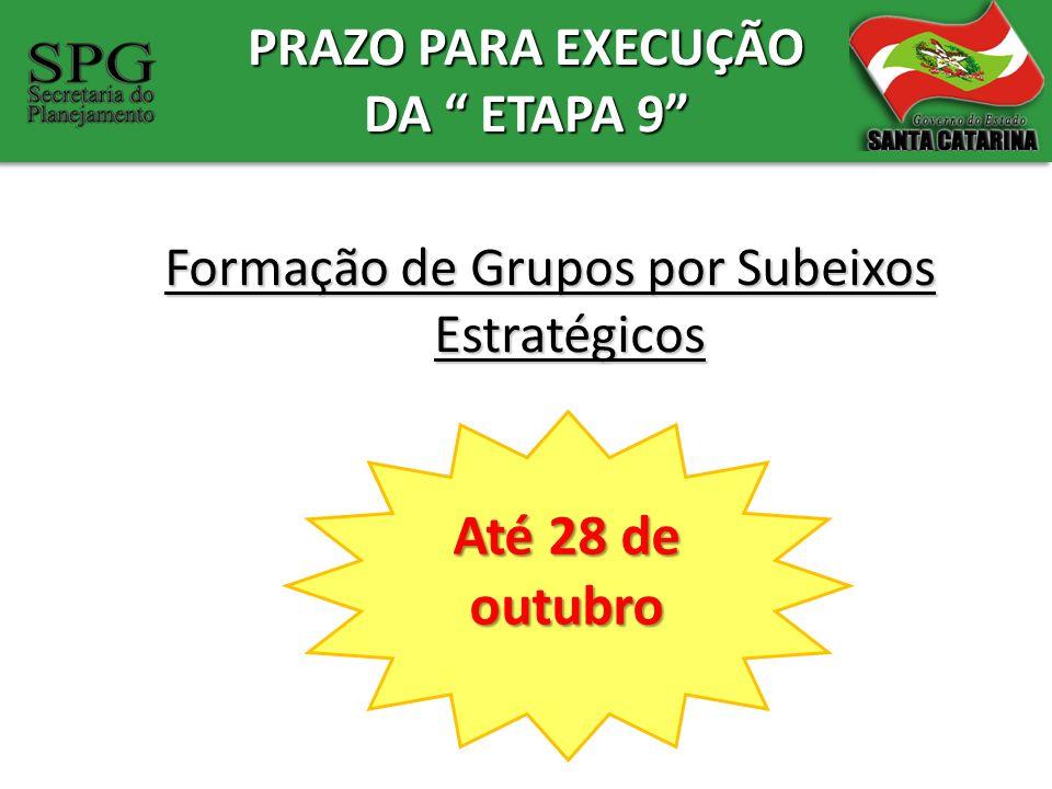 PRAZO PARA EXECUÇÃO DA ETAPA 9 Formação de Grupos por Subeixos Estratégicos Até 28 de outubro