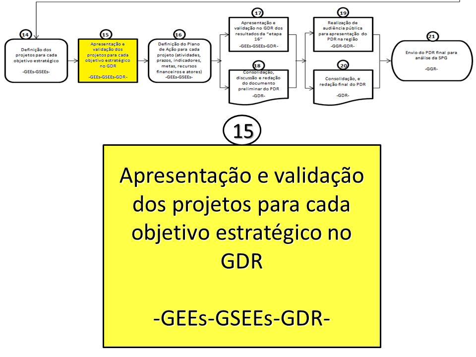Apresentação e validação dos projetos para cada objetivo estratégico no GDR -GEEs-GSEEs-GDR- 15