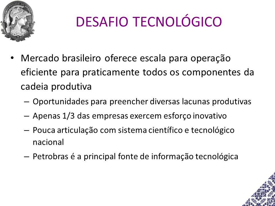 Mercado brasileiro oferece escala para operação eficiente para praticamente todos os componentes da cadeia produtiva – Oportunidades para preencher di