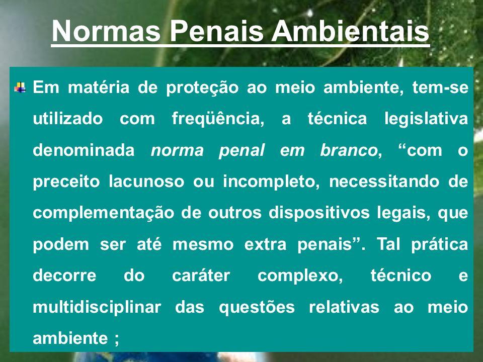 Princípio da intervenção mínima do Direito Penal O princípio da subsidiaridade da ação penal, no sentido de que o Direito Penal deve (pode) incidir so