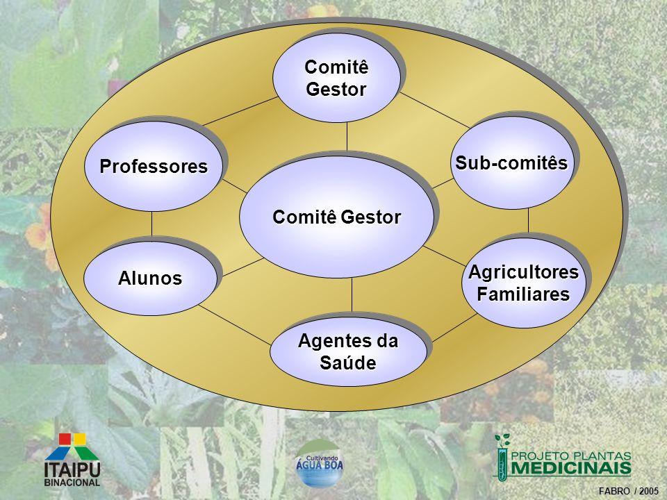 FABRO / 2005 Comitê Gestor AgricultoresFamiliaresAgricultoresFamiliares Sub-comitêsSub-comitês AlunosAlunos Agentes da Saúde Saúde ProfessoresProfesso